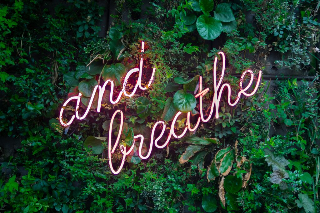 image of neon text reading 'just breathe' in front of green plants